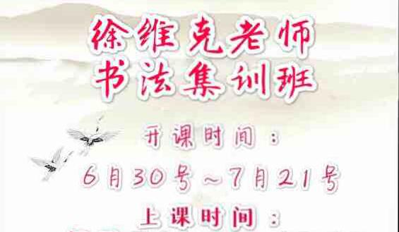 徐维克老师暑假书法考级集训班